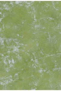 PVC Rabiot 460 zelená